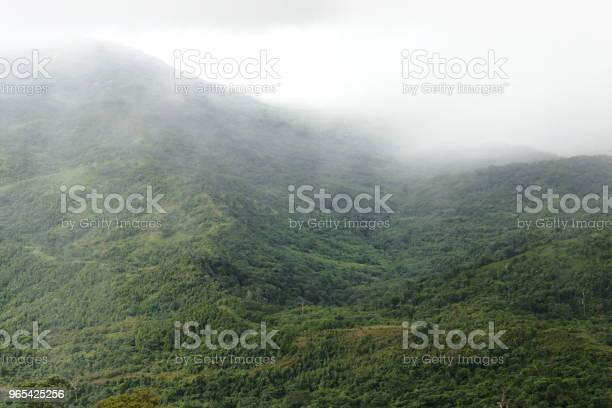 Foto de Belas Paisagens Naturais De Névoa Sobre Montanha Verde e mais fotos de stock de Beleza