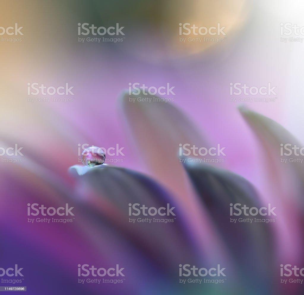 Beautiful Nature Backgroundmacro Shot Of Amazing Spring
