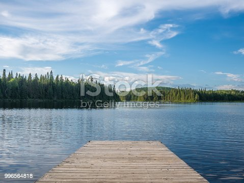 Beautiful nature landscape in a hot summer day