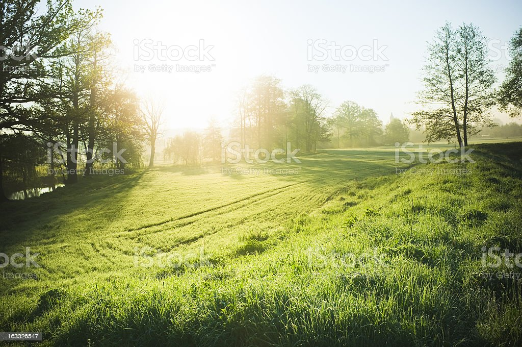 Beautiful nature - Royalty-free Agricultural Field Stock Photo