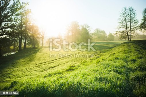 Beautiful morning landscape