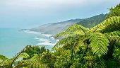 Vibrant green trees and fern fronds in the foreground, with a coastline of beaches, rocks and hills below. The Tasman Sea is calm, pale blue, and the surf line is white where waves hit the land.