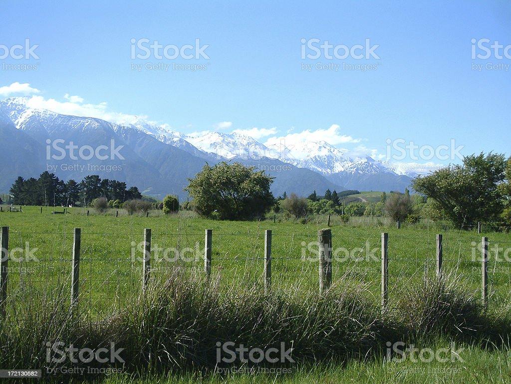 Beautiful New Zealand stock photo