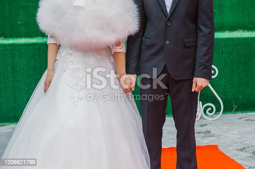 Beautiful newlyweds at the solemn registration of marriage