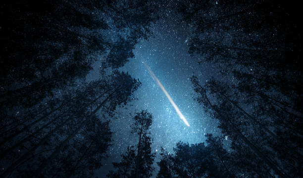 beautiful night sky, the milky way, meteor and the trees. elements of this image furnished by nasa. - shooting stars stock photos and pictures