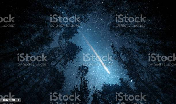 Photo of Beautiful night sky, the Milky Way, meteor and the trees. Elements of this image furnished by NASA.