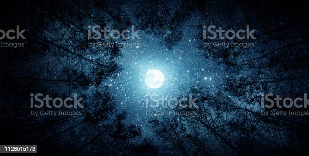 Photo of Beautiful night sky, the Milky Way, moon and the trees.