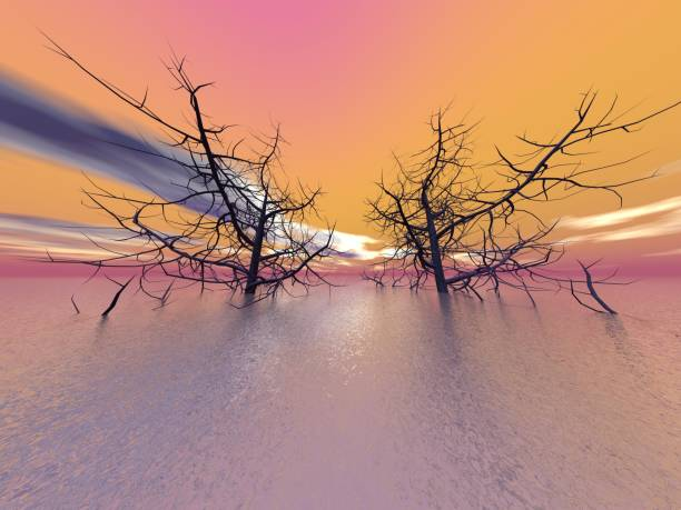 beautiful ocean view with two large trees - 3d rendering stock photo