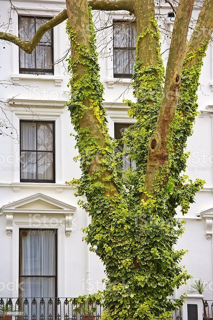 красивые дома лондона