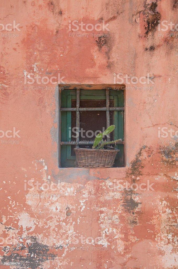 beautiful old window in a red wall,flowers royaltyfri bildbanksbilder