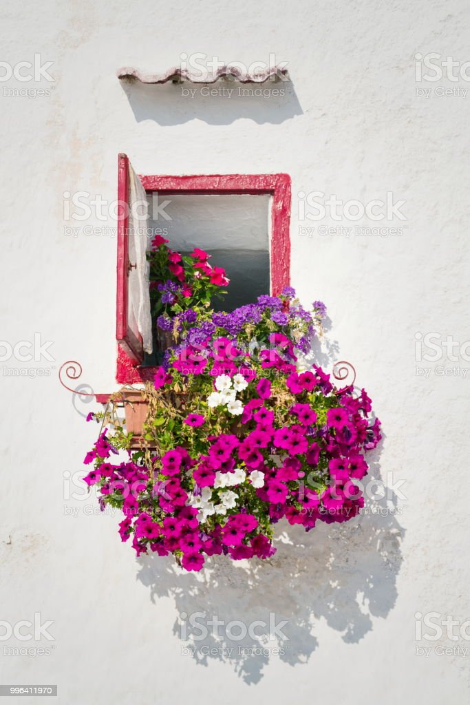 Beautiful open wooden window with pink, white and violet flowers in...