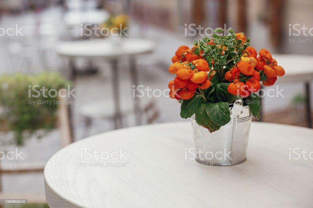 Bellas Flores Naranja De Metal Del Cubo En Tabla De Madera