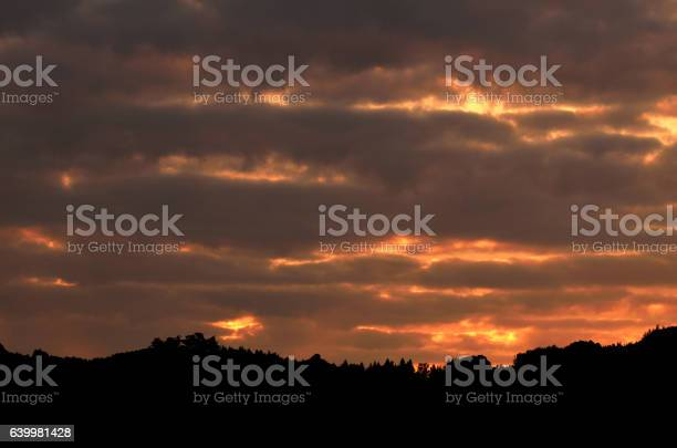 Photo of Beautiful orange sky above dark forest at sunset