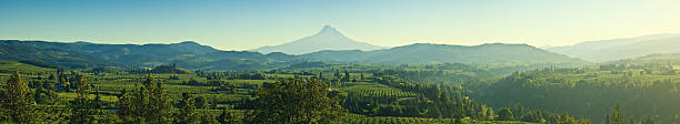 Beautiful Oregon Pano  hood river valley stock pictures, royalty-free photos & images