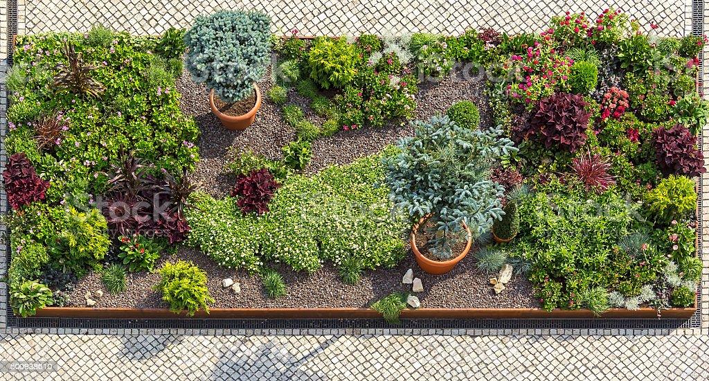 Beautiful Ornamental Garden stock photo