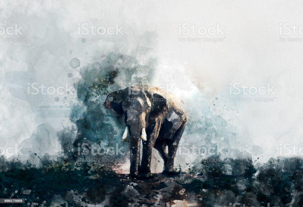 beautiful painting art watercolor elephant stock photo