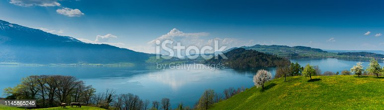 beautiful panorama landscape with green fields and blossoming flowers and trees and mountains in the background in central Switzerland on Lake Zug