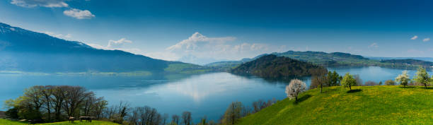 beautiful panorama lakeside landscape in Switzerland with green fields and blossoming flowers and trees and mountains behind beautiful panorama landscape with green fields and blossoming flowers and trees and mountains in the background in central Switzerland on Lake Zug zug stock pictures, royalty-free photos & images
