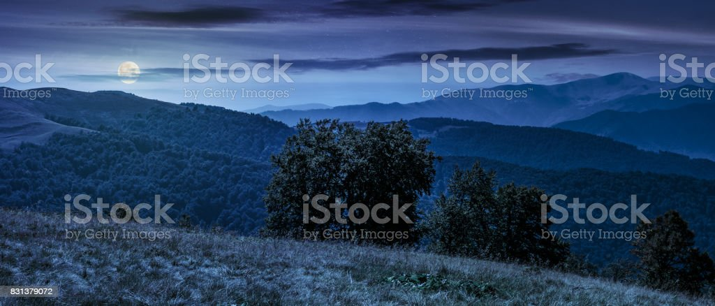 beautiful panorama of Carpathians at night stock photo