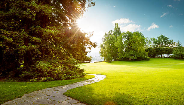 Beautiful panorama of green city park at dawn Beautiful panorama of green city park at dawn grounds stock pictures, royalty-free photos & images