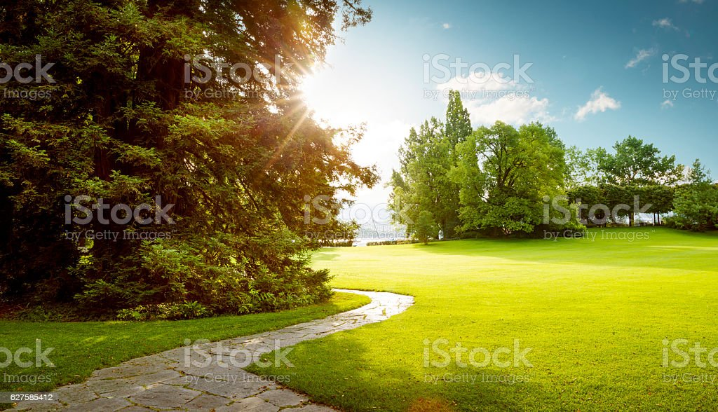 Beautiful panorama of green city park at dawn stock photo