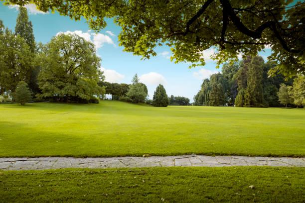Wunderschönes Panorama von grünen Stadtpark im Morgengrauen – Foto