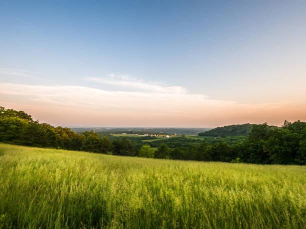 hermosa vista panorámica mirando hacia abajo a la histórica ciudad de galena en illinois desde la parte superior del montículo de herradura con el prado de hierba larga verde en primer plano y color de rosa y azul cielo más allá al amanecer. - illinois fotografías e imágenes de stock
