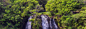Beautiful panoramic view of Opaekaa Waterfalls in Hawaii, island of Kauai. Lush green tropical forest around the waterfall.