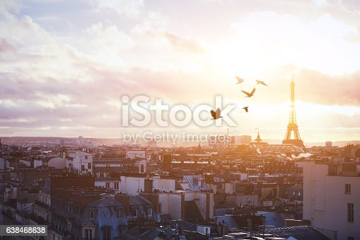 istock beautiful panoramic view of Paris at sunset 638468638