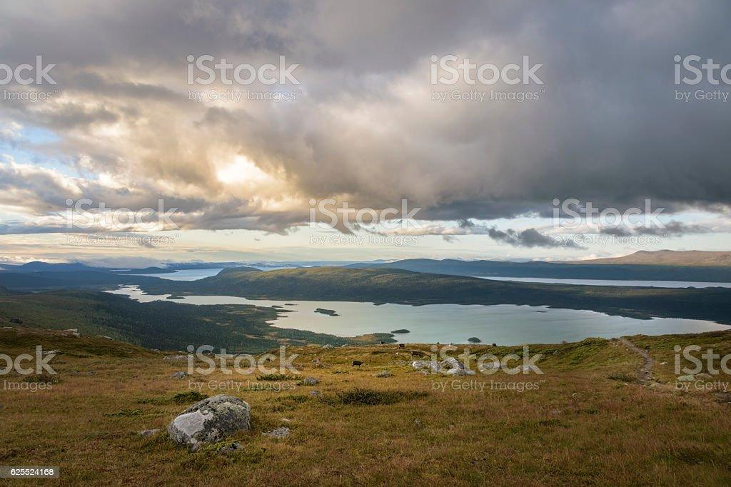 Beautiful panoramic vista of big lake landscape with herd reindeer foto