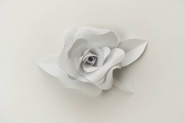 Beautiful paper rose flower close up photo on white background. stock photo