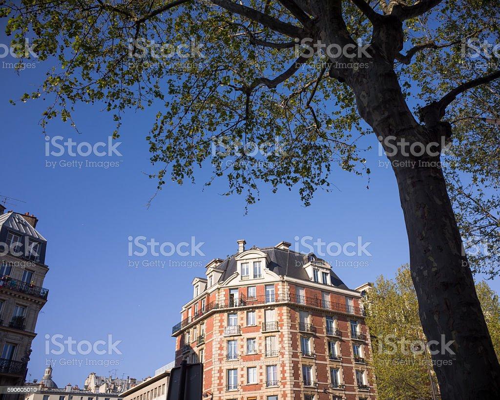 Beautiful Parisian Building in Spring royalty-free stock photo
