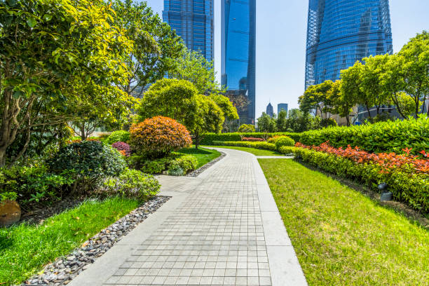 Beautiful park at a sunny day Shanghai. landscaped stock pictures, royalty-free photos & images