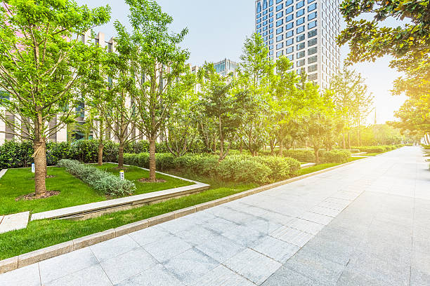 beautiful park at a sunny day,shanghai,china - 緑 ビル ストックフォトと画像