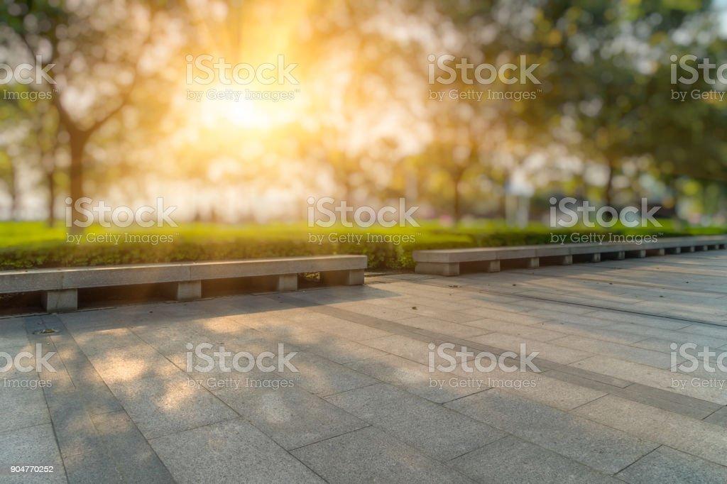 Beautiful park at a sunny day,shanghai,china stock photo