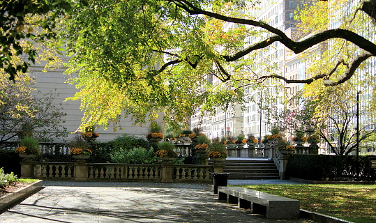 Beautiful park in Downtown Chicago