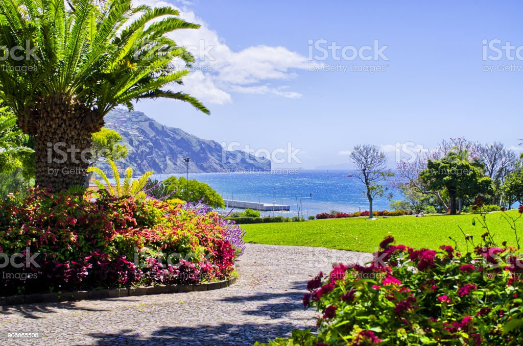 Beautiful park in Funchal, Madeira, Portugal stock photo