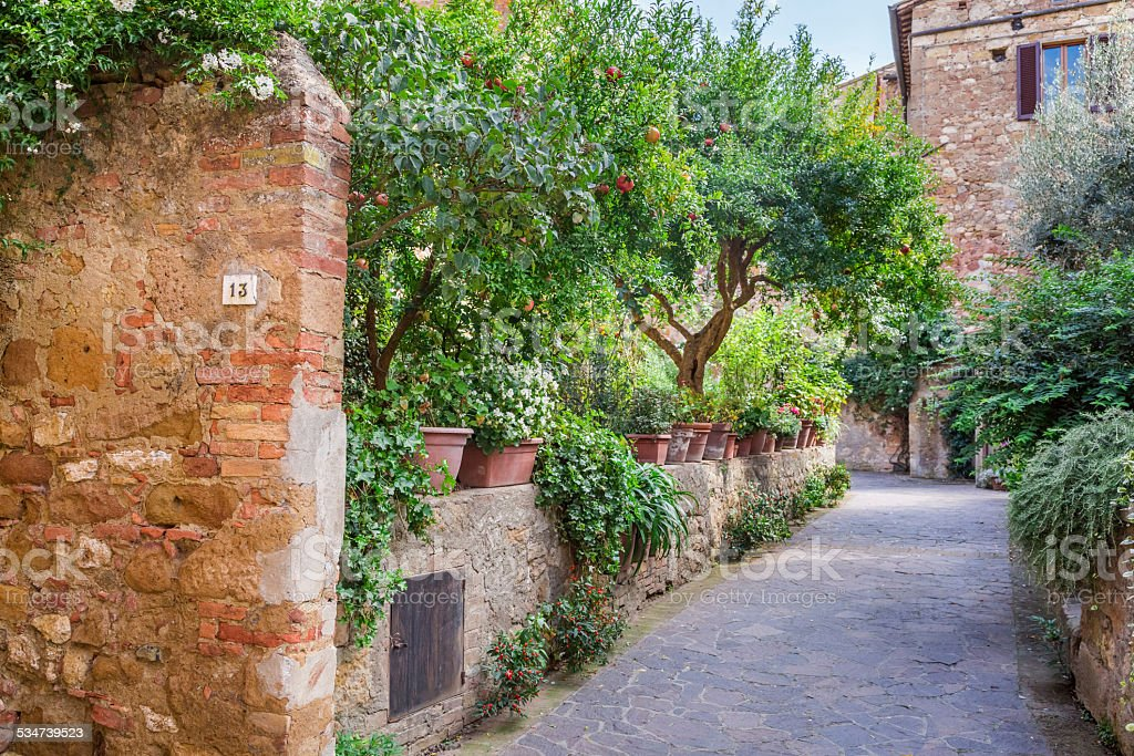 Beautiful park in the vintage town in Tuscany, Pienza stock photo