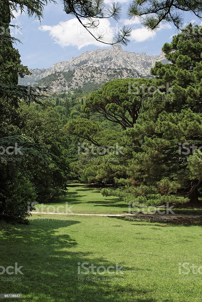 beautiful park landscape royalty-free stock photo