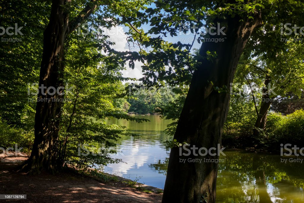 Beautiful park scene in public park with lawn, trees, water and...