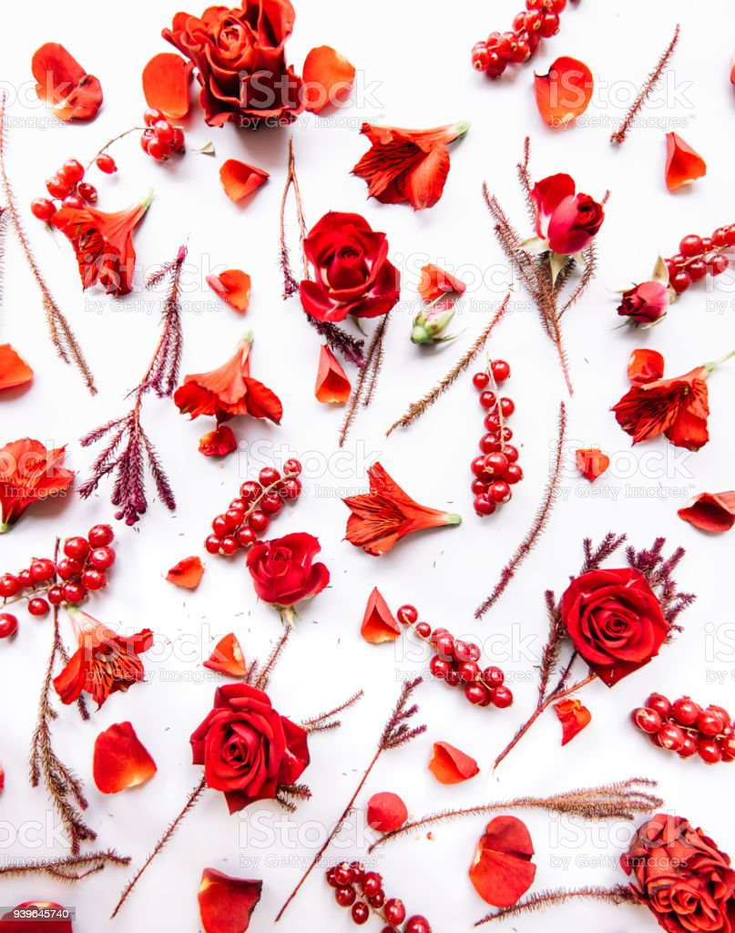 Beautiful Passionate Vivid Flat Lay Of Red Flowers And Red Currant ...