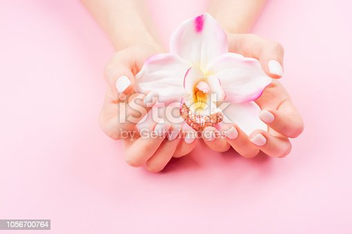 Females hands with pastel manicure are holding an orchid flower. Pink background