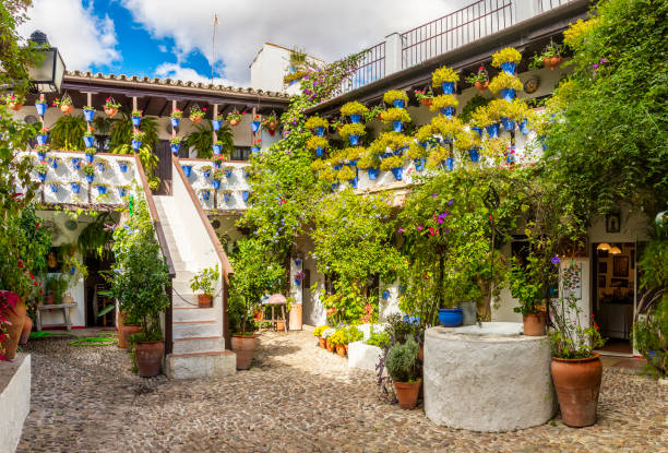 Beautiful patio with flowers in Cordoba, Spain Cordoba, Spain - Oct 29, 2018: Inner cobblestone court of house (Patio cordobes) with green trees and flowerpots in Cordoba, Spain on October 29, 2018 cordoba spain stock pictures, royalty-free photos & images