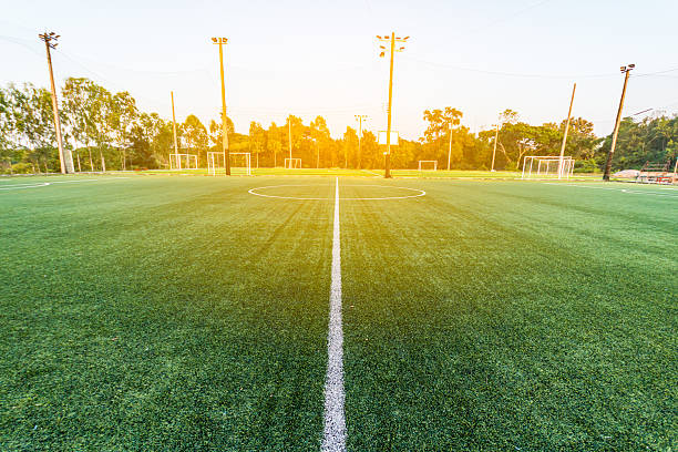 beautiful pattern of fresh green grass for football sport, – Foto
