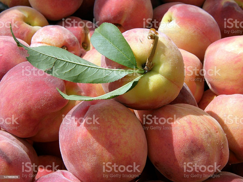 Beautiful Peach with Green Leaves royalty-free stock photo