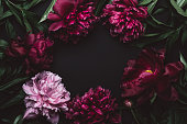 istock Beautiful peonies frame in dark colors. Black Floral background. Festive flowers concept. Soft focus, copy space 1246158333