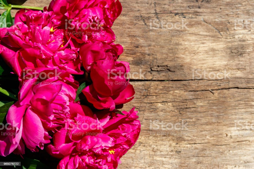 Beautiful peony flowers on rustic wooden background. Top view, copy space royalty-free stock photo