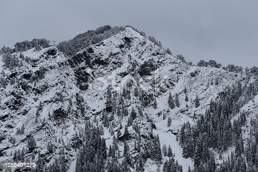 Beautiful picture of mountain covered with snow in nainital uttarakhand