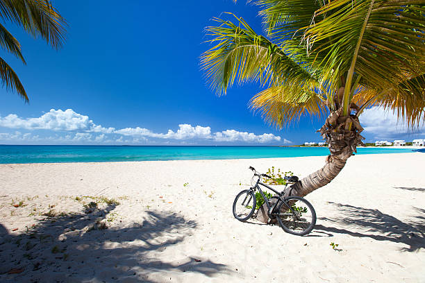 Beautiful picture of the Caribbean beach with a blue skyline stock photo