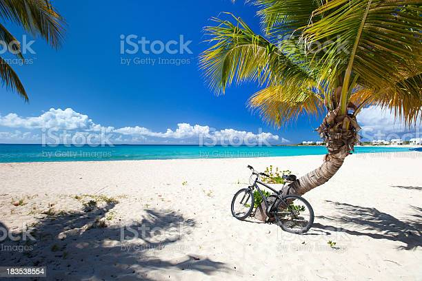 Beautiful Picture Of The Caribbean Beach With A Blue Skyline Stock Photo - Download Image Now